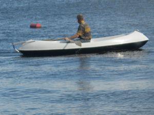камышовый кот лодка